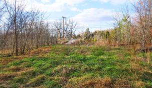 1.25 Acre - Alamance County, NC
