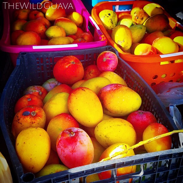 Glenn Mangoes are in full swing! Come see us this Saturday at the _shopsatwiregrass and Sunday at _h