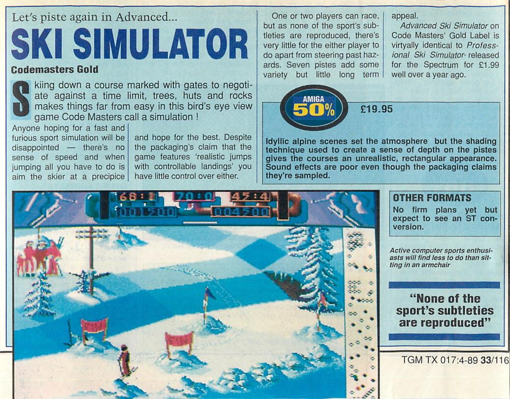 TGM-SkiSimulator.jpg