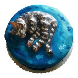 Katzen-Torte