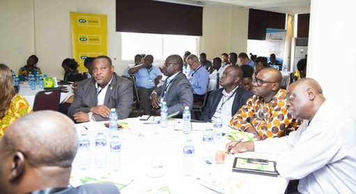 Ghana Green Summit Pictures_108.JPG