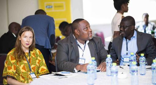 Ghana Green Summit Pictures_3.JPG