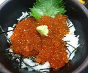 takohachi-18.png
