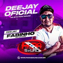 Pará Sound - Dj Oficial Fabinho.png