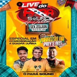 CD Pará Sound Live 2k21 - Dj Murilo Sound