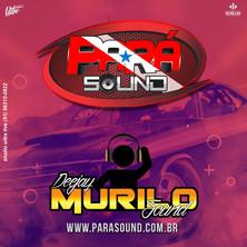 Capa_CD_Pará_Sound_Edição_Fim_De_Ano_2k1