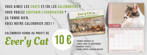 Calendrier Every Cat