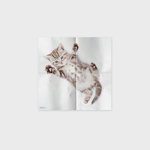 Serviettes motifs chats (4 différents)