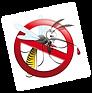 zanzara-pericolo.png