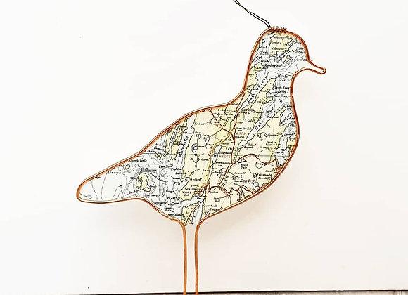 Map of Shetland Bird