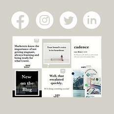 Beige and Brown New Website Launch Insta