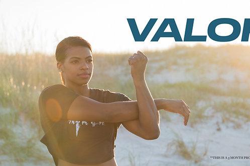 VALOR Online Training