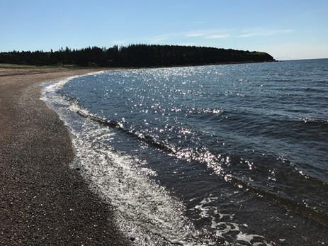 1. Beach.JPG