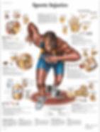 PRP Sports-Injuries.jpg