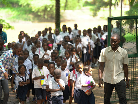 NPR: Education-the Key to Saving Bonobos