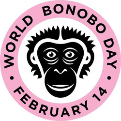 The Bonobo Project