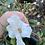 Thumbnail: Camellia Cornish Snow
