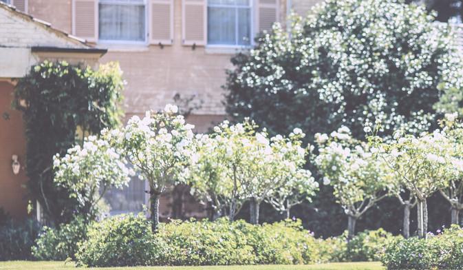 J-I-Wedding--72.jpg