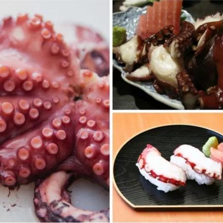 Além do salmão! Conheça 5 variados e deliciosos peixes e frutos do mar consumidos no Japão