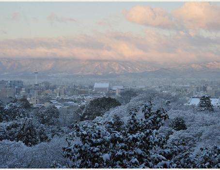 Conheça curiosidades sobre o inverno japonês