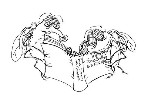 Food Safety and Hygeine