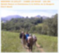 Capture d'écran 2020-07-10 à 22.43.13.