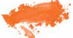 #12 Orange Country Californie