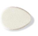 Éponge Ovale / Oval Sponge