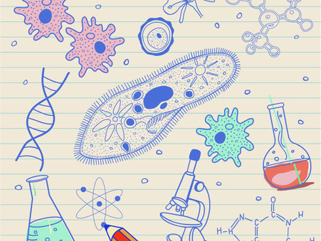 Exam Preparations: First Steps up to A-Level Biology