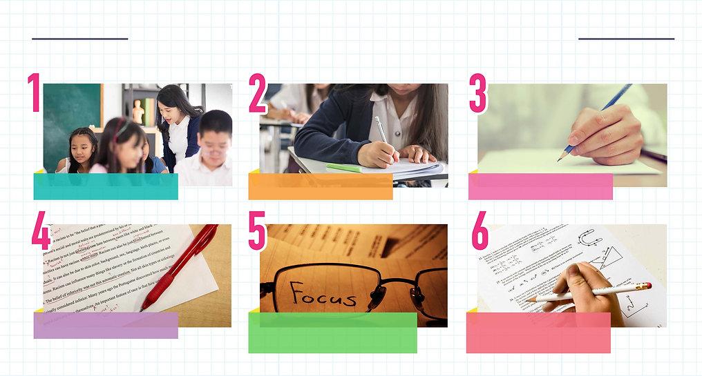 sophia-education-o-level-biology-tuition-singapore-lesson-plan