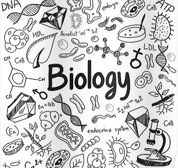3 Top Tips to Get an A* in A-Level Biology