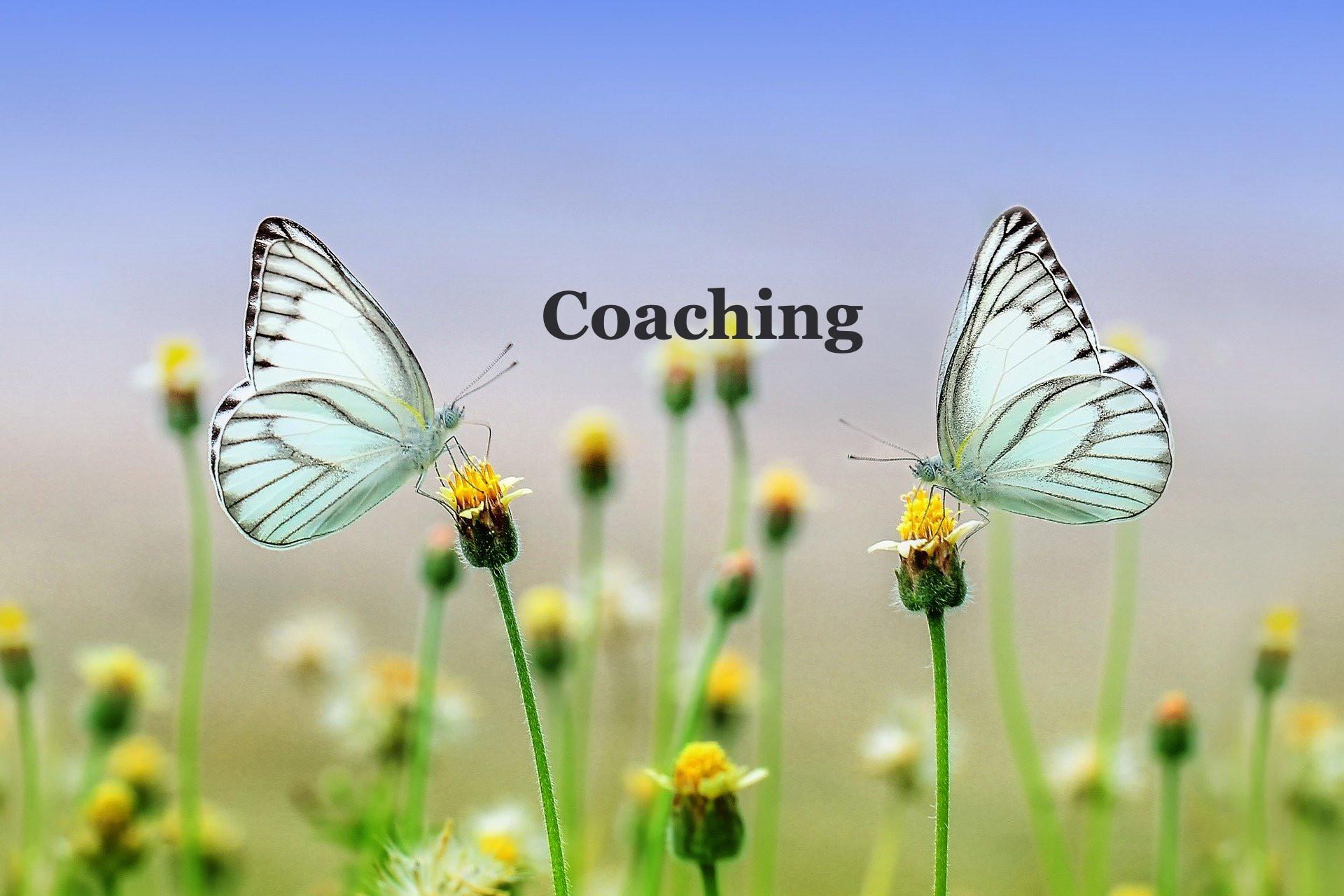 Executive Coaching 60 Minutes