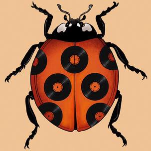 Vinyl Bug