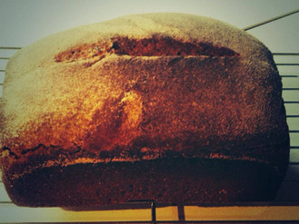 Is modern day bread making you ill?