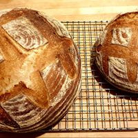 A simple bread recipe to get you started!