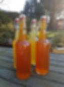 Orange Kombuca.jpg