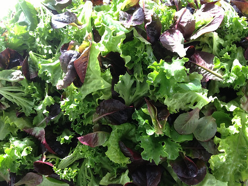 Mixed Greens-