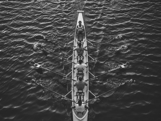5 Questions to Get Your People Rowing in the Same Direction