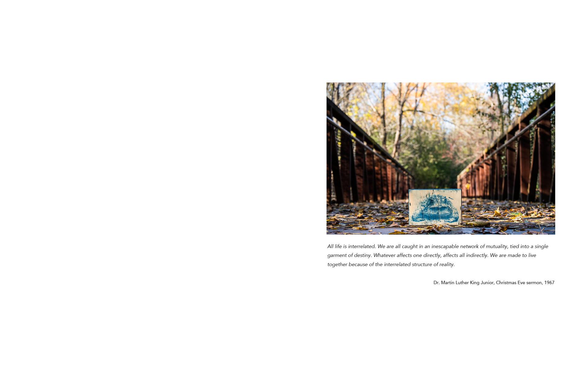 photobookwebsite4.jpg