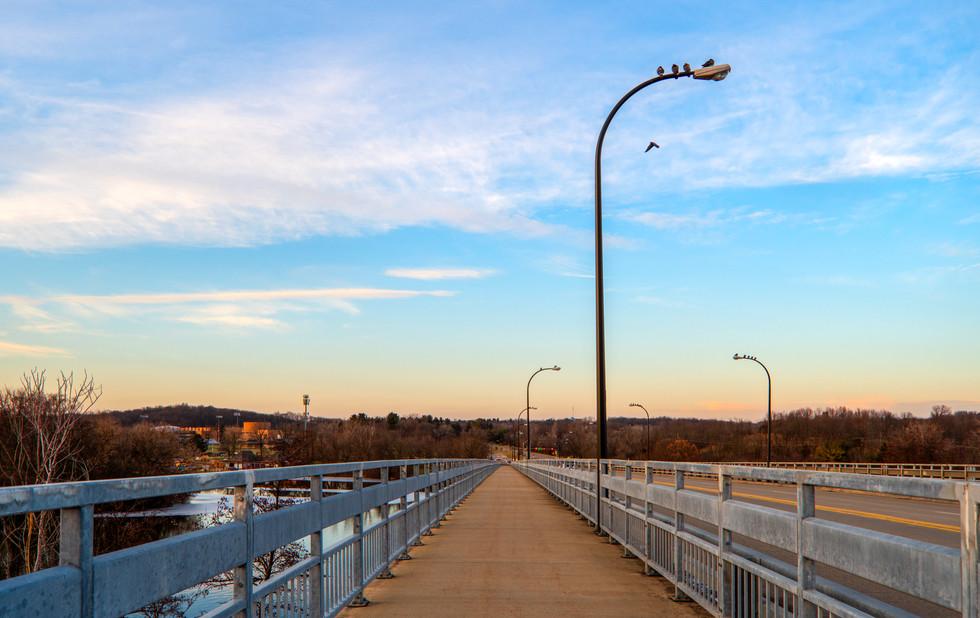 Post or Perch? Huron Parkway, Ann Arbor, Michigan. 03 February 2020, 5:23 P.M.