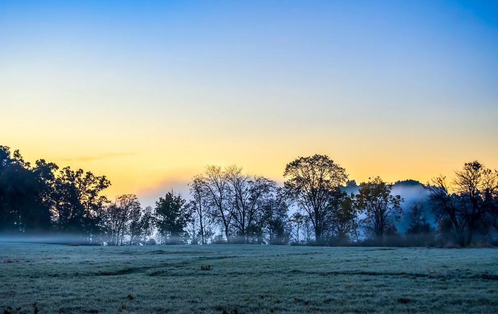 Farmland Fog. Plymouth, Michigan.  19 October 2019, 6:51 A.M.