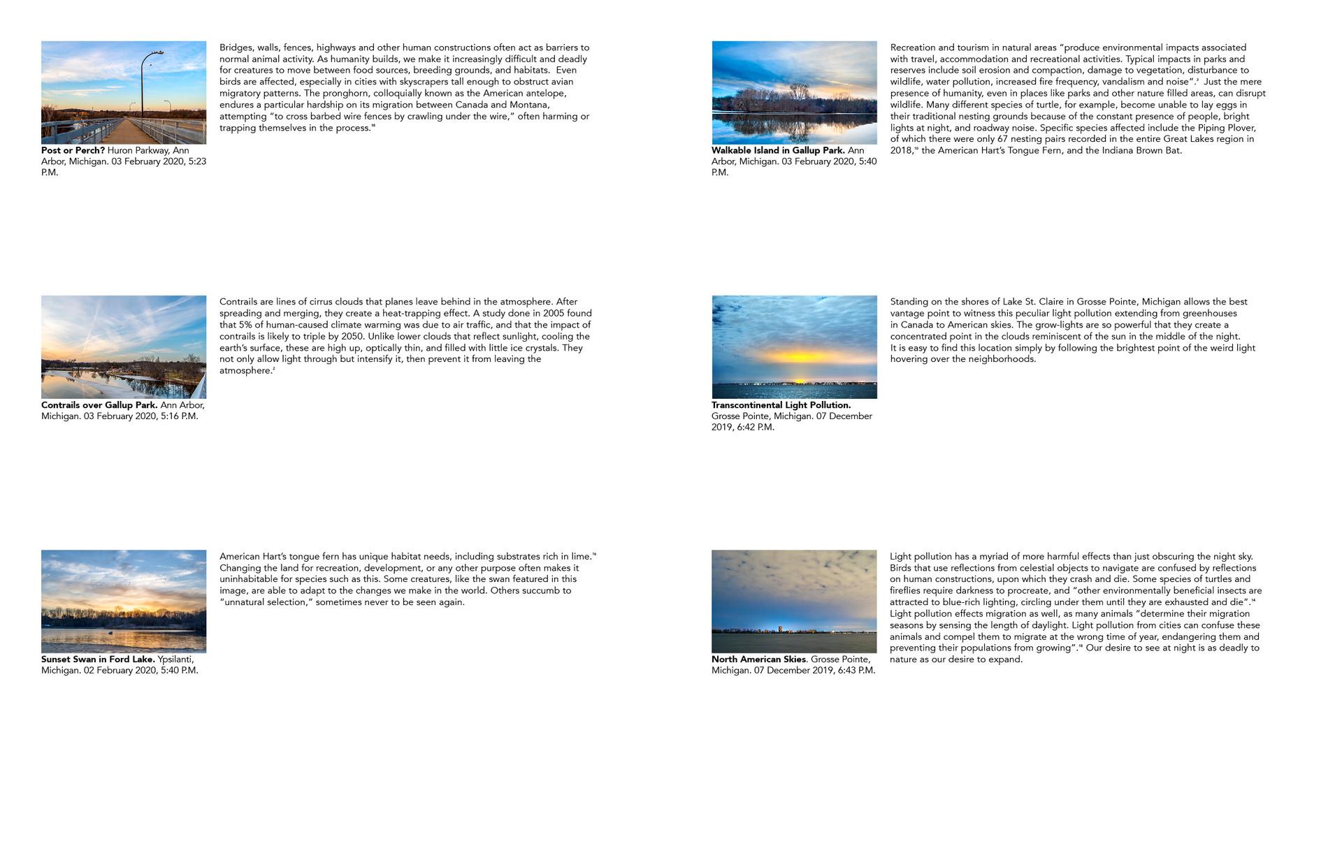 photobookwebsite31.jpg