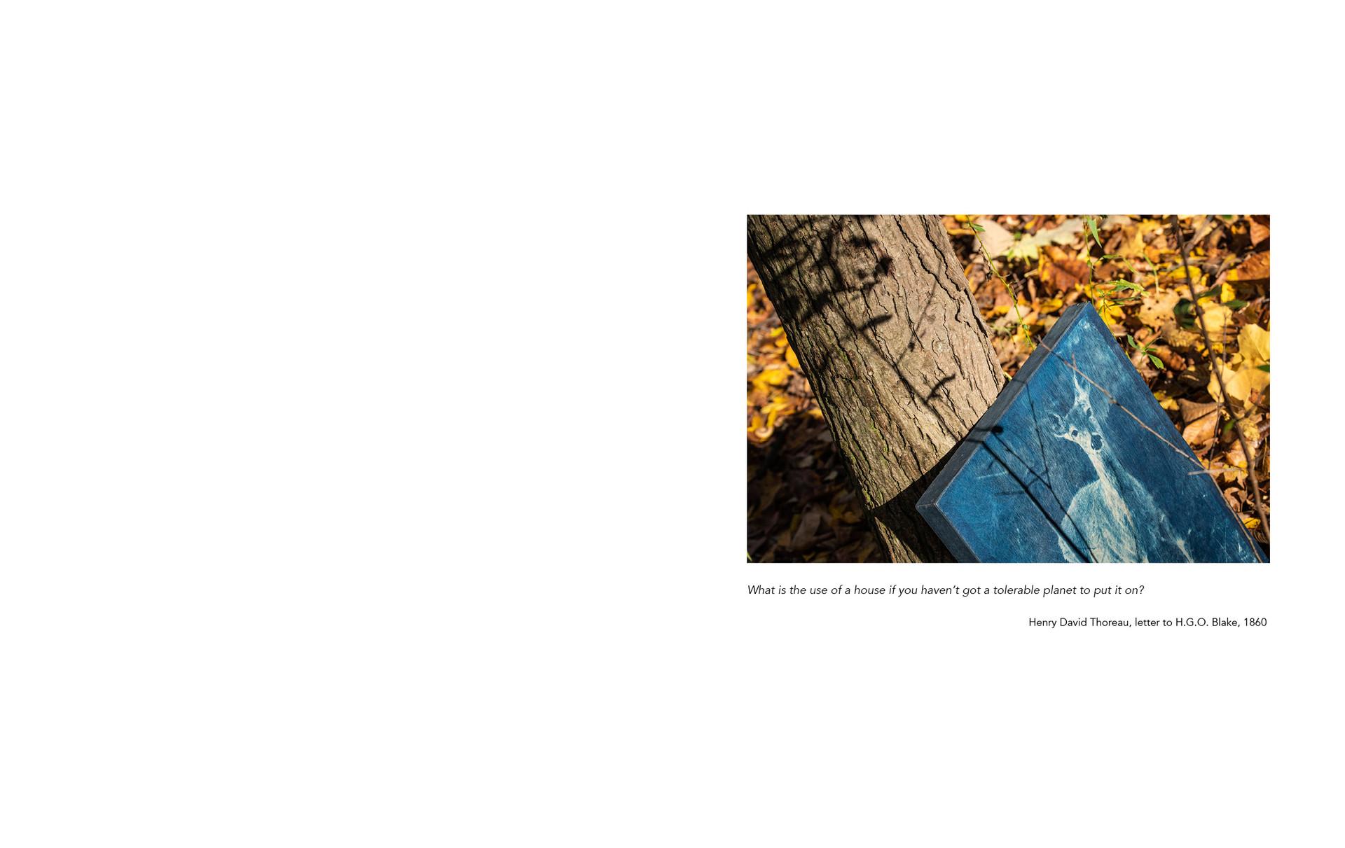 photobookwebsite12.jpg