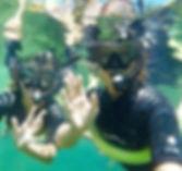 manatee dive