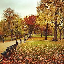 boston commons.jpg