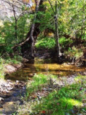Brush Creek.jpg