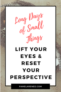 Long Days of Small Things / Do you ever get stuck in your attitudes and perspectives and wish you had a way to get out of the vicious cycle of your own thoughts and actions? Learn how to intentionally lift your eyes and reset your perspective as you live each day. Faith - parenting - motherhood - grace - spiritual growth - personal growth - discipline - habits | www.pamelarenee.com