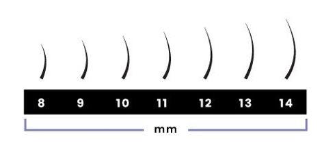 Lash Length