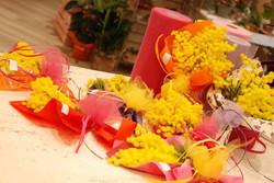 mazzolini mimosa