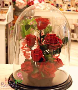 Giardino incantato rose